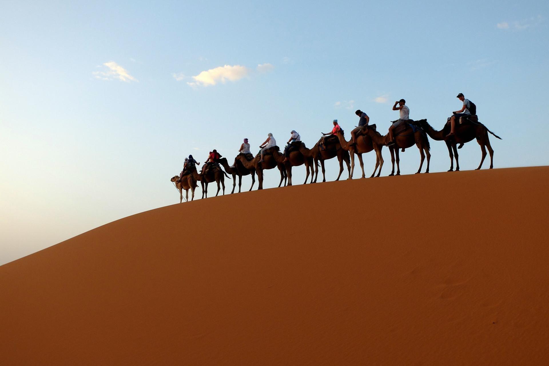 Pustynia. Senior. Maroko