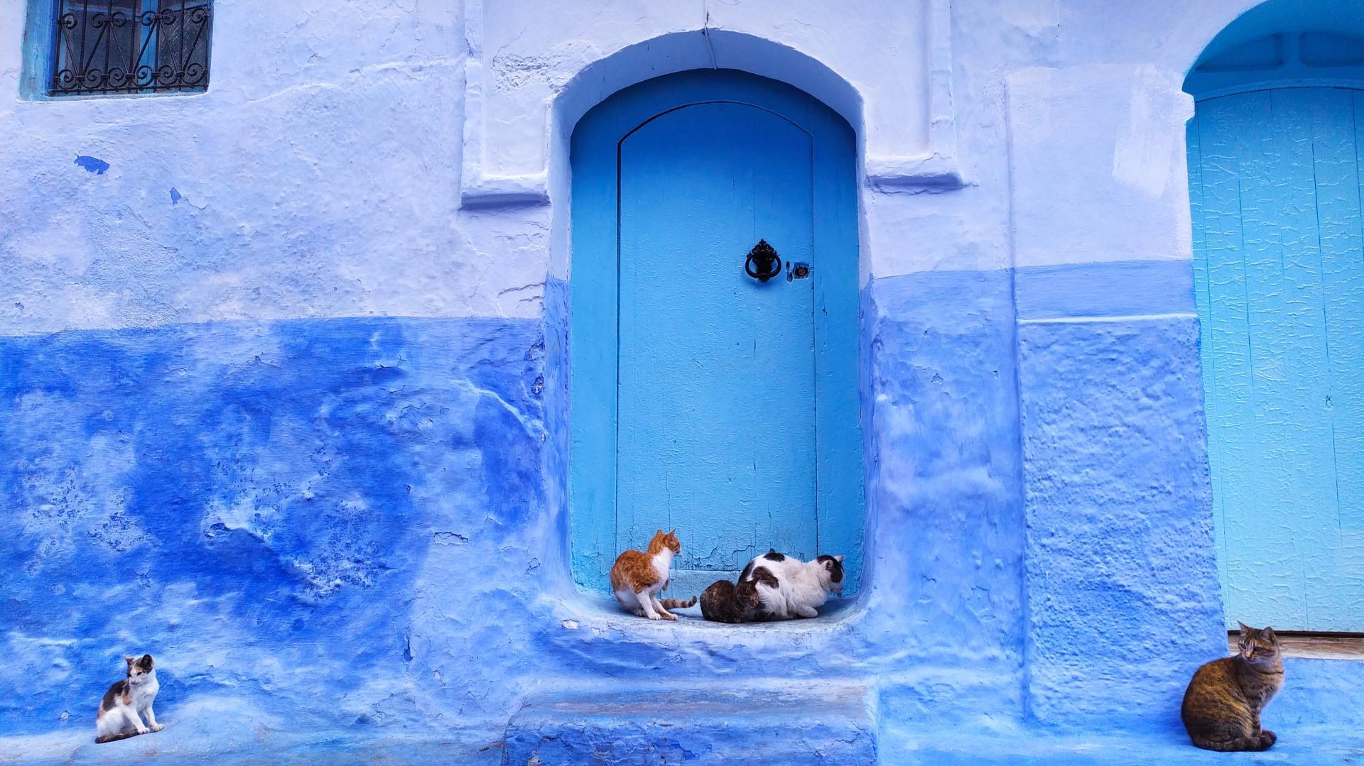 Maroko. Afryka. Błękit