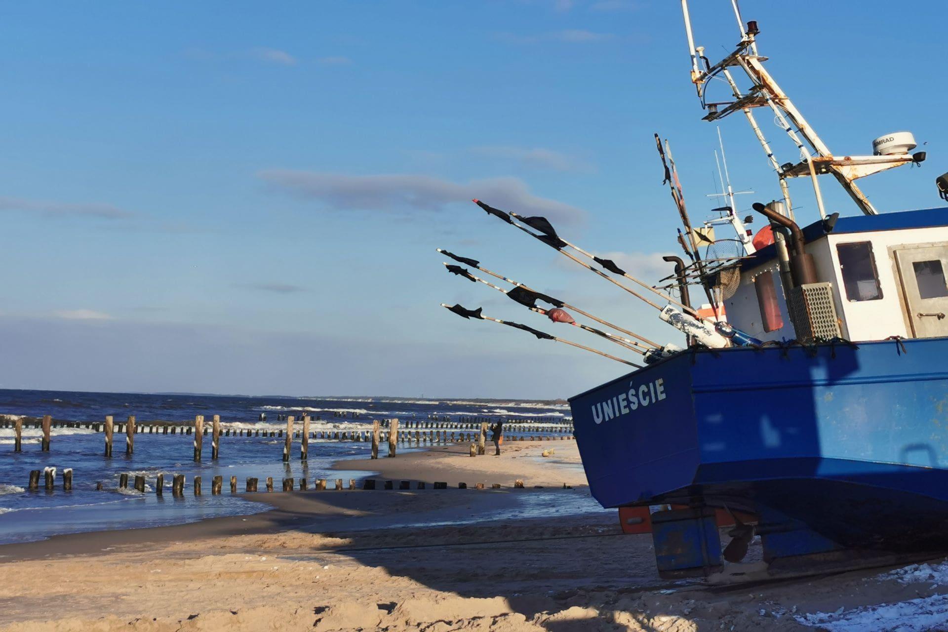 Zimowy Baltyk ryby
