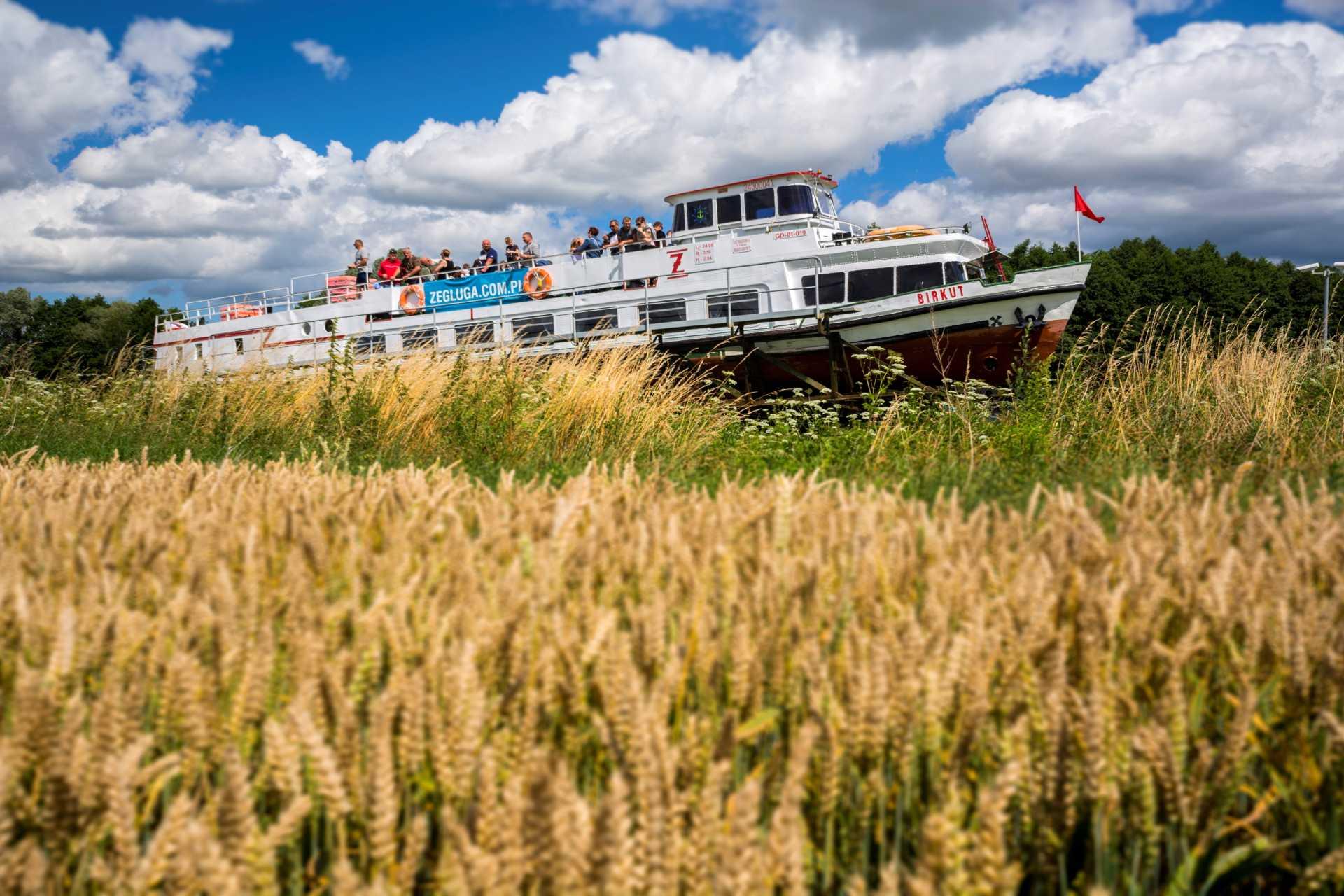 statkiem po trawie